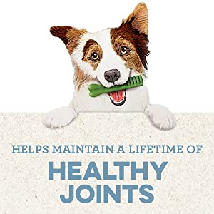 Helps maintain a lifetime of healthy joints, dog treats, dog chews, soft chews for dogs, soft treats