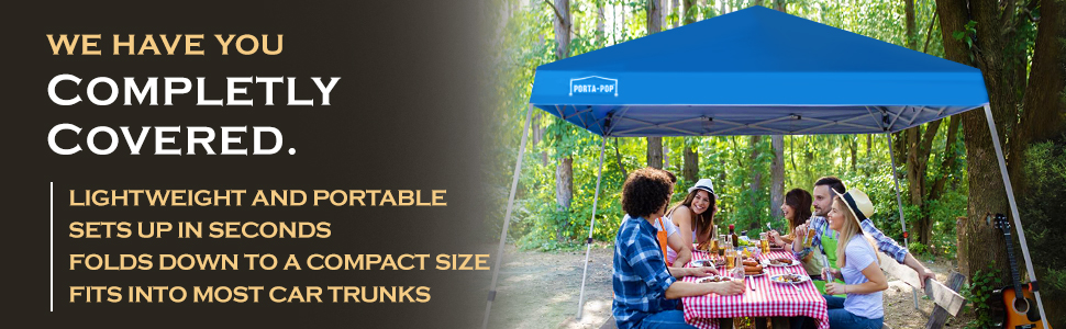 Portable Instant Canopy