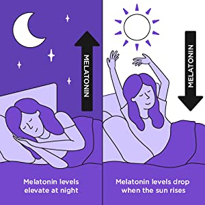 Melatonin Fluctuates Night and Day