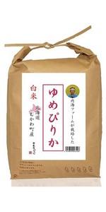 【精米】北海道むかわ町産 内海ファームのお米 白米 ゆめぴりか 5kg 平成29年産