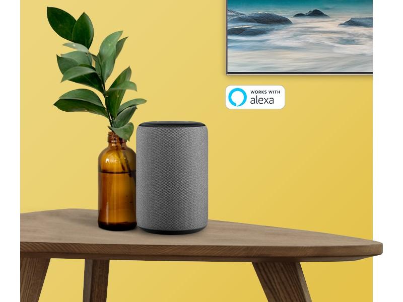 Amazon Alexa Built-in