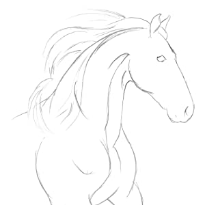 Using an HB pencil, begin by establishing the basic outline of the horse