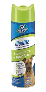 Amazon Com Woolite Heavy Traffic Foam Protection Home