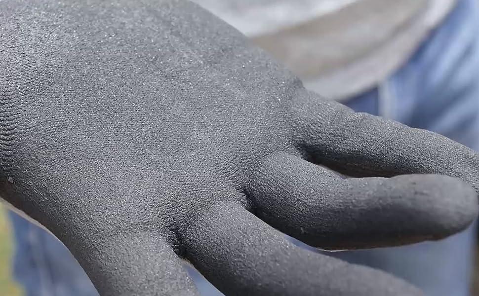 palm detail view