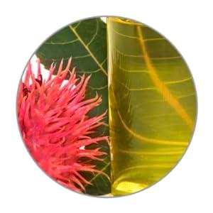 antioxidants shiny hair moisture smooth silky healthy scalp vitamins soft soften softening smoothing