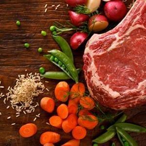rachael ray rachel real ingredients dog food