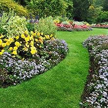 protect, garden, jardin