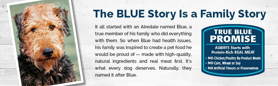 BLUE for Cats Mature Dry Cat Food