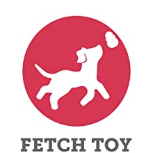 Fetch toy for fun toss and chase