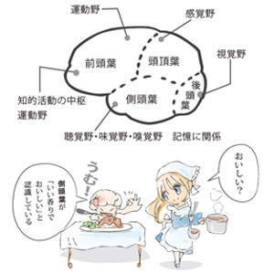 神経伝達6