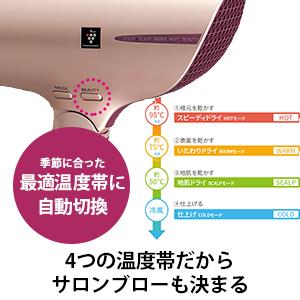 サロンブロー 最適温度帯 自動切換 美髪 プラズマクラスター IB-JP9