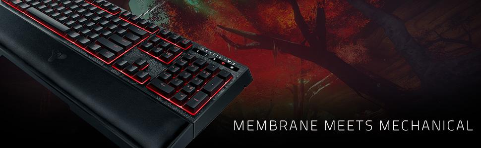 d65f7b665e8 ... the Destiny 2 Razer Ornata Chroma lets you perfectly execute up to ten  commands at the same time, every time, so you can take down the Red Legion  with ...