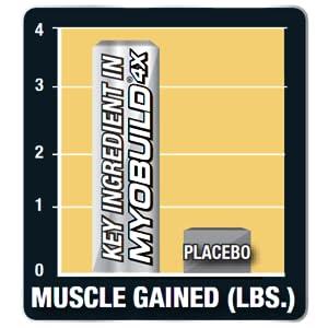 myobuild, bcaa, amino acid, muscletech, build muscle