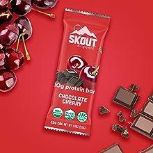 Chocolate Cherry Skout Organic 10 Gram Plant Based Protein Bars Vegan Non GMO