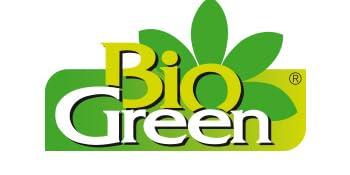 BG Logo