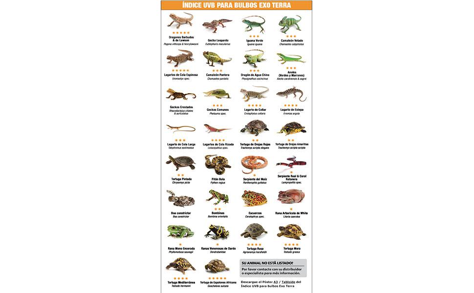 clasificacion;reptile;exoterra;UVB