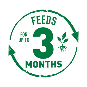 Feeds up to 3 Months