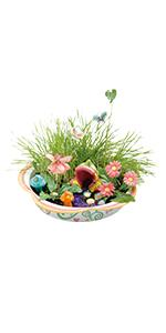 Elegant Enchanted Fairy Garden · Grow Light · Sparkle U0027N Grow Terrarium · Grow  Butterfly · Aquarium Terrarium