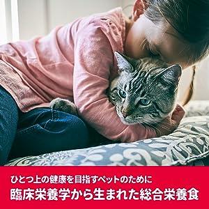 SD-Pro猫 毛玉A