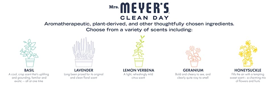 Amazon.com: Señora Meyers 64carga detergente de ...
