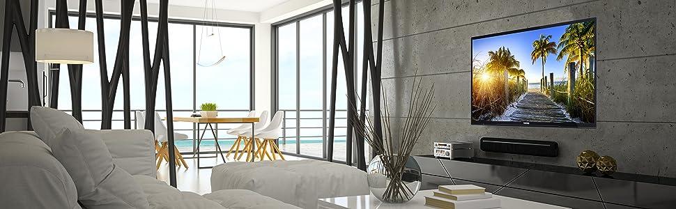 toshiba 43l1665da 110 cm 43 zoll fernseher full hd. Black Bedroom Furniture Sets. Home Design Ideas
