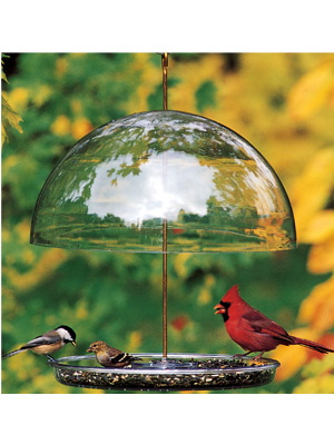 Guaranteed Quality, Durability And Service Have Made Droll Yankees Bird  Feeders The Preferential Favorites Of Birds And Bird Lovers Alike.