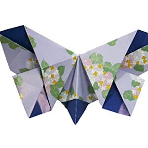 Money Origami Butterfly : 14 Steps (with Pictures) - Instructables | 300x300
