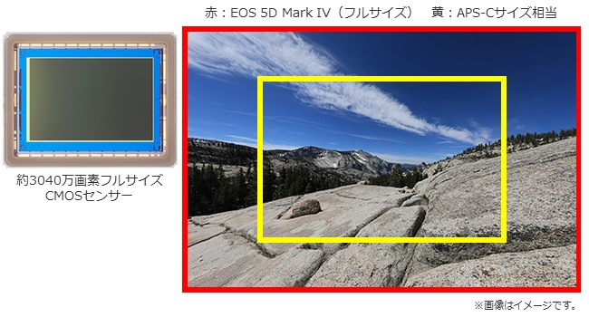 EOS5DMark IV-1