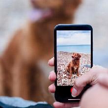 NEW! Smartphone videos