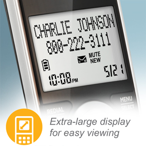 extra large LCD display