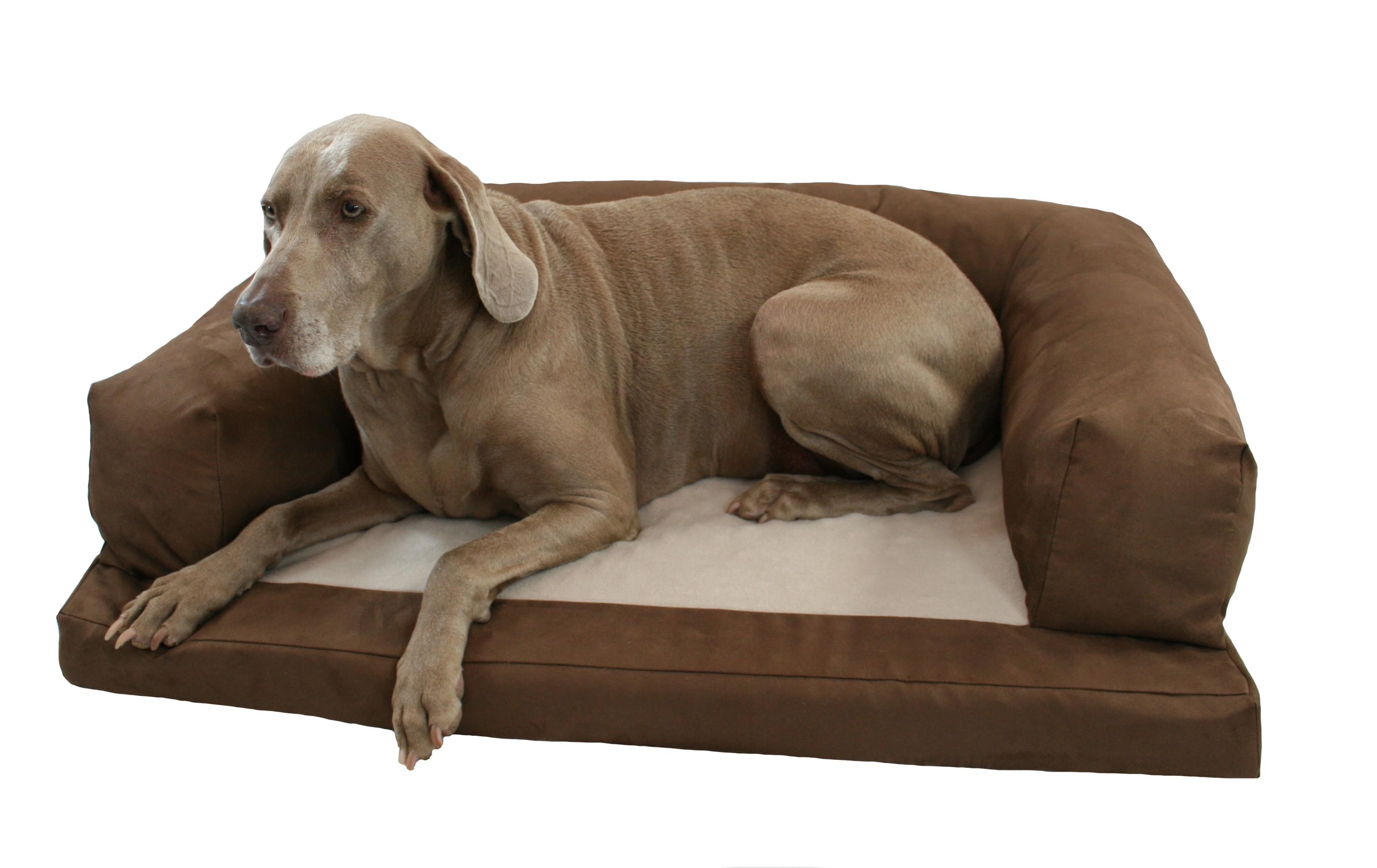 bronson gq brand mattress large beds dog story a dogs bed new unveils your casper for