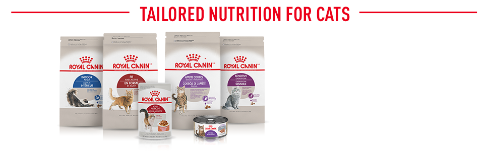Royal Canin Feline Health Range - Tailored Nutrition for Cats