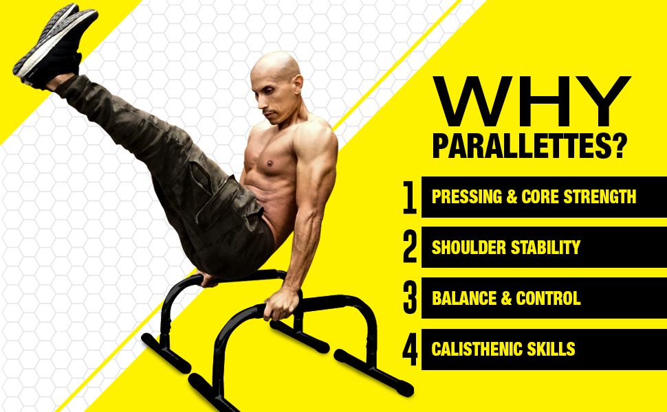 Lebert Fitness Parallettes