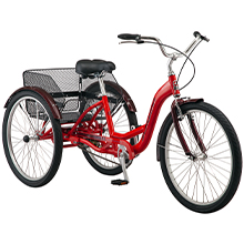 Meridian 1-Speed Trike