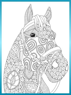 Pferde Malbuch Fur Erwachsene Und Madchen Wunderschone Pferde Ausmalbilder Ausmalbuch Mit Spiralbindung Perforierten Einseitig Bedruckten Seiten Hochwertiges Dickes A4 Kunstlerpapier Amazon De Topo Malbucher Bucher