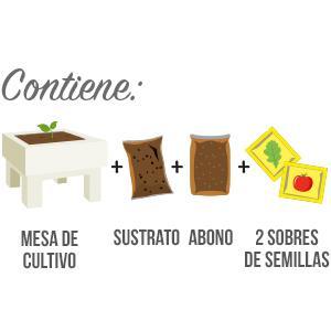 Huerto Urbano - Seed Box Cocktails - Batlle: Amazon.es: Jardín