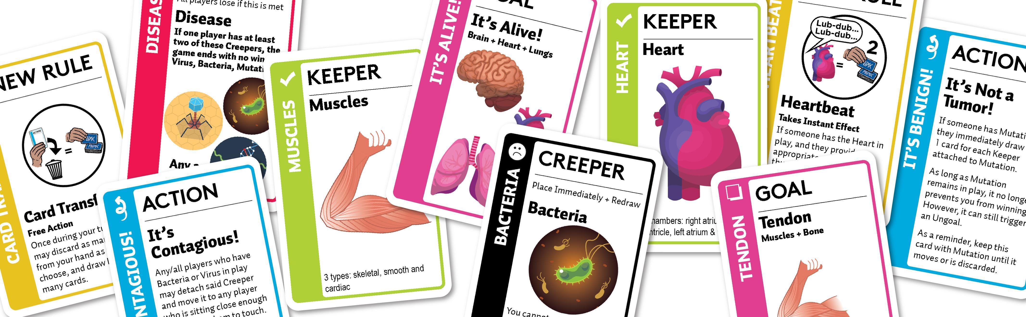 Amazon.com: Fluxx Anatomy Card Game: Toys & Games