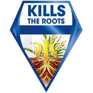 Kills Weeds to the Root!