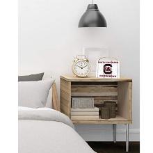 South Carolina Gamecocks Weathered Logo College Plaque