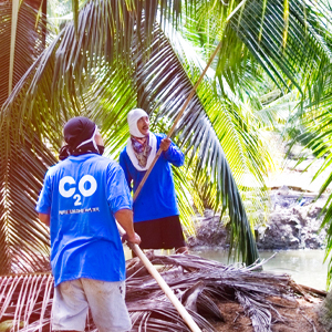 C2O Coconut Water Farmers and Co-Ops