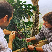 Coffee Origins Sustainable Sourcing