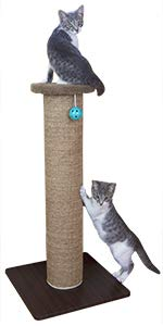 scratching post. cat scratcher, cat toy