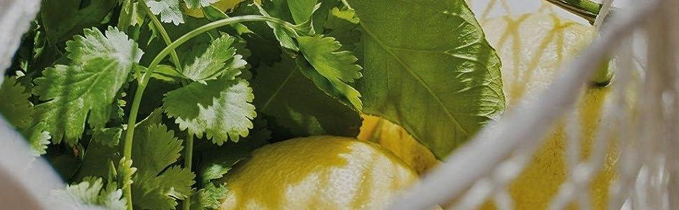 crabtree and evelyn lemon citrus cilantro soap body wash bubble bath shower lotion cream moisturizer