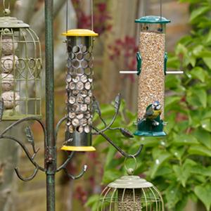 Peckish Winter Warmer Wild Bird Seed Mix, 12.75 kg: Amazon ...