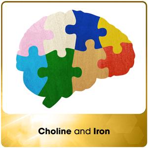 Choline and Iron