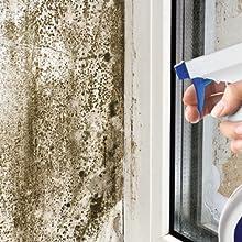 mold spray; mildew spray; black mold control