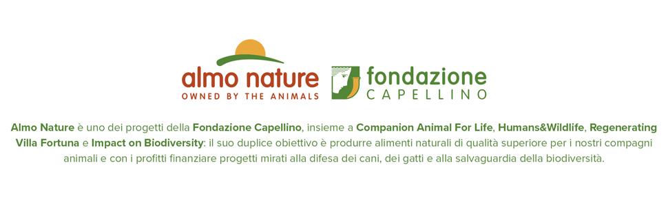 Almo Nature Cibo Per Cani Olistico Medio Con Salmone E Riso 12 Kg Amazon It Prodotti Per Animali Domestici