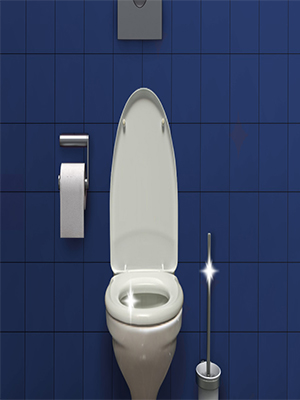 bref wc nettoyant toilettes entretien wc