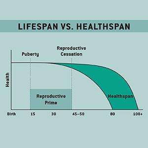 Lifespan vs. Healthspan graph