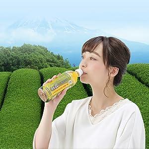 お茶処・静岡県の茶葉